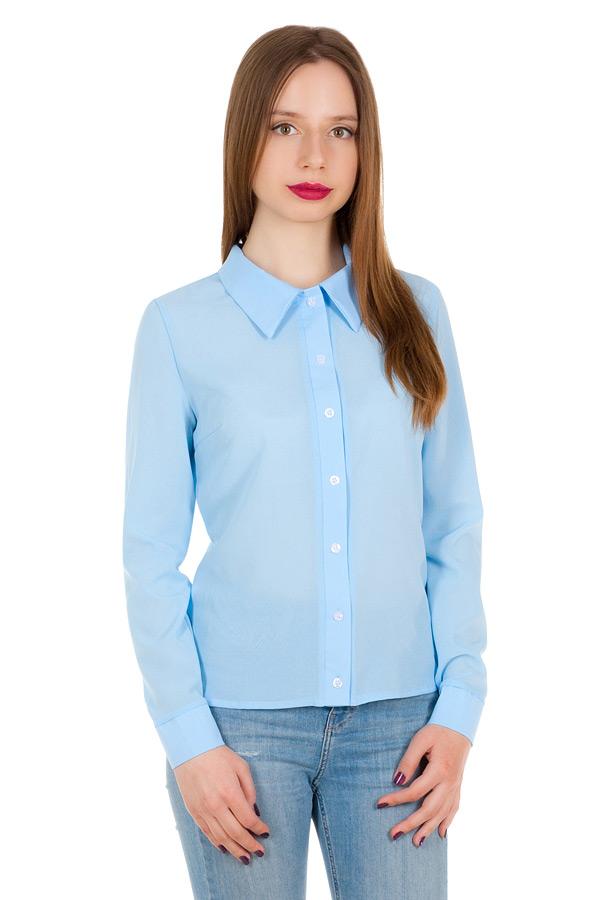 Рубашка длинный рукав Однотон Голубой